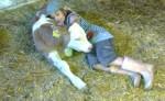 Kuscheln mit dem neugeborenen Stier; Bildquelle: privat